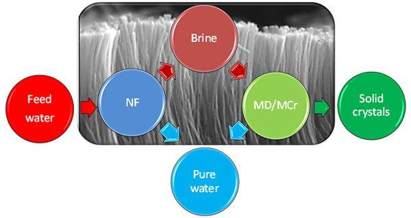 Hybrid forward osmosis / membrane distillation
